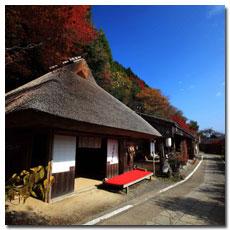 Toganoki-jaya