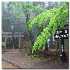 Hosshinmon-oji